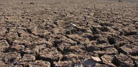 The dry portion of a riverbed in California (public domain image)
