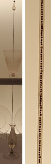 Galileo's thermometer (left) and a closeup of the tube (right).