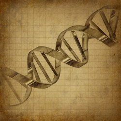 DNA that is thought to be more than a million years old has been discovered in the Bering Sea. (illustration by Lightspring via shutterstock.com)